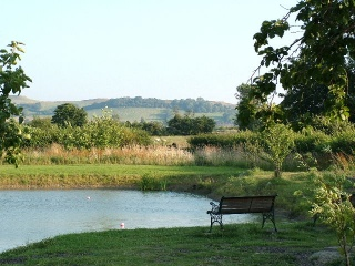 Holiday Cottage Reviews for Chestnut Cottage - Holiday Cottage in Southam, Warwickshire