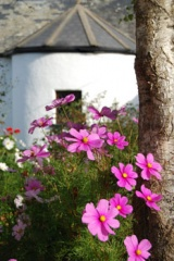 Holiday Cottage Reviews for Yarde Farm - Cottage Holiday in Woolacombe, Devon