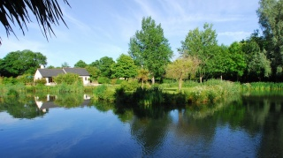 Holiday Cottage Reviews for Lakeside Cottage - Holiday Cottage in Ivybridge, Devon