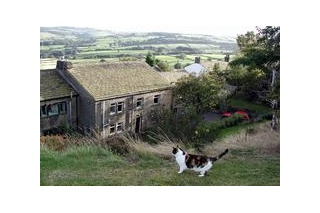 Holiday Cottage Reviews for Cherry Tree Cottages in Pennine Yorkshire - Holiday Cottage in Halifax, West Yorkshire