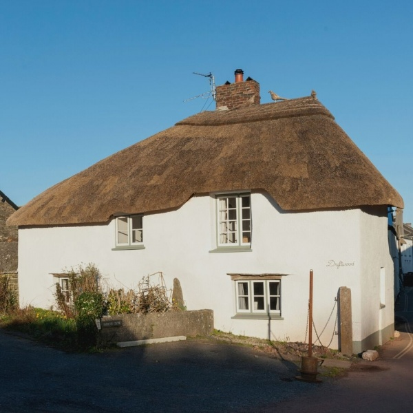 Holiday Cottage Reviews for Driftwood - Self Catering Property in Malborough, Devon