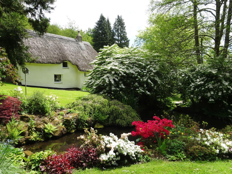 Gibhouse Drewsteignton Pretty Gardens