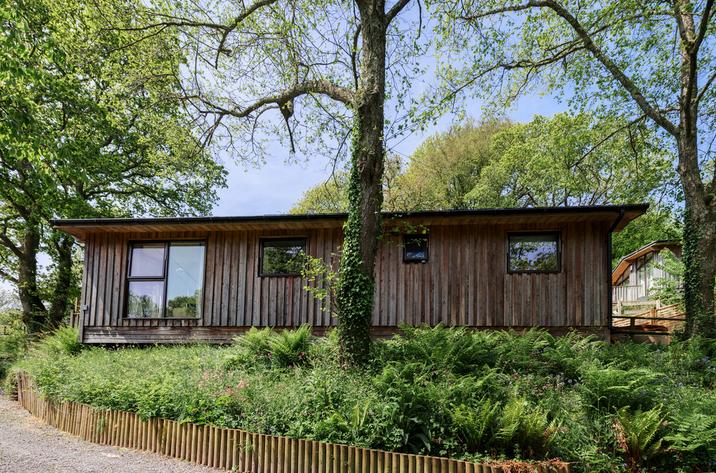 Hillside At Gara Mill In Slapton13