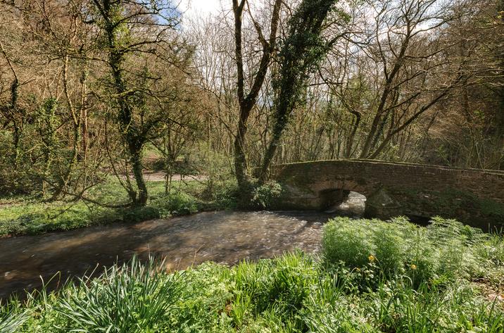 Hillside At Gara Mill In Slapton14