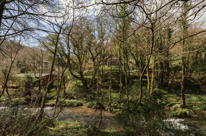 Hillside At Gara Mill In Slapton15