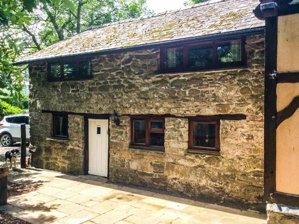 Holiday Cottage Reviews for Ty Gwyn - Holiday Cottage in Llanwrthwl, Powys