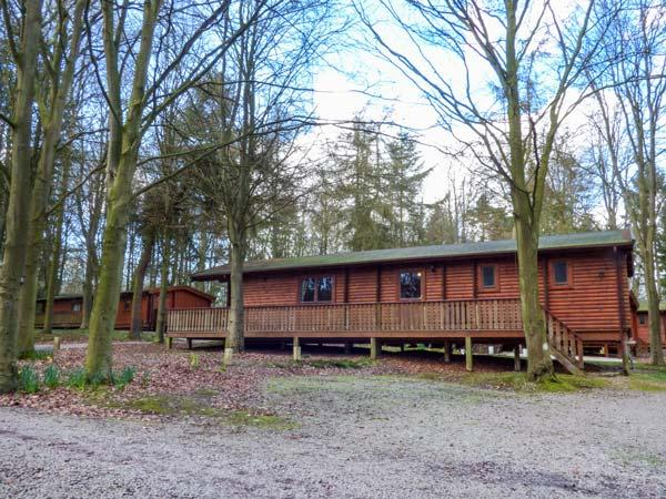 Lodge 50
