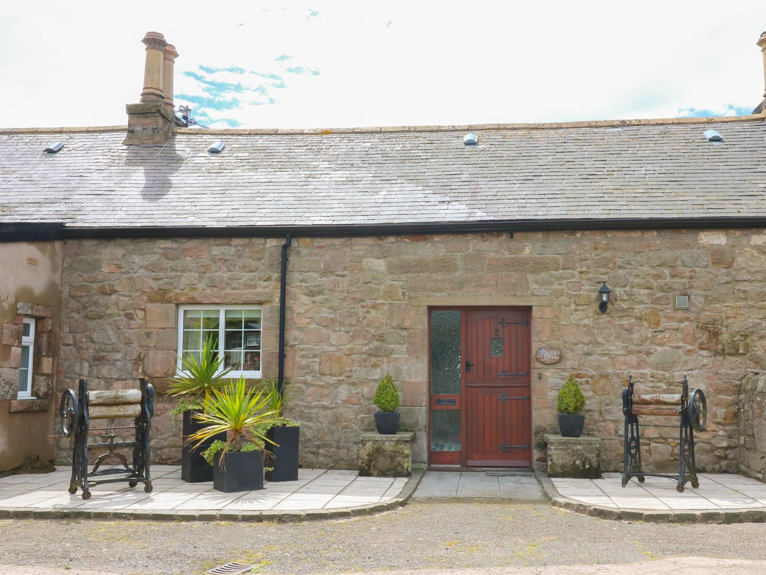 Holiday Cottage Reviews for Bluebell - Holiday Cottage in Berwick-upon-tweed, Northumberland