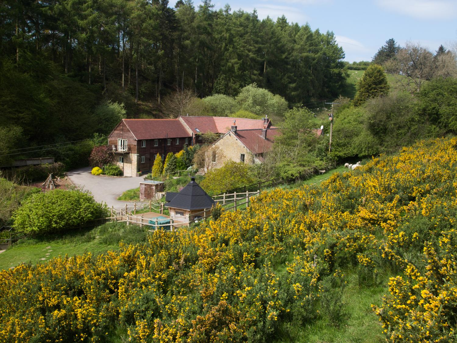 Holiday Cottage Reviews for Munslow Cottage - Holiday Cottage in Diddlebury, Shropshire