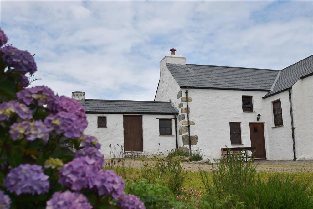Holiday Cottage Reviews for Panteurig Cottage - Holiday Cottage in Goodwick, Pembrokeshire